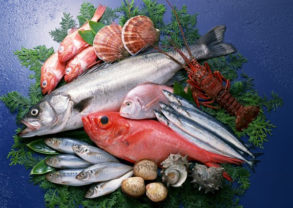 Ryby a saláty v metabolic balance® - recepty vhodné pro hubnutí, zdravý metabolizmus a extra energii