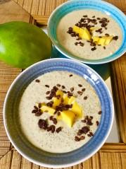 Mangový chia pudink z rostlinného mléka | Metabolic balance recepty