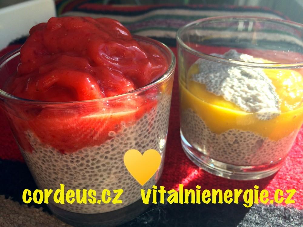 metabolic balance jahodová zmrzlina a mandlový chia pudink