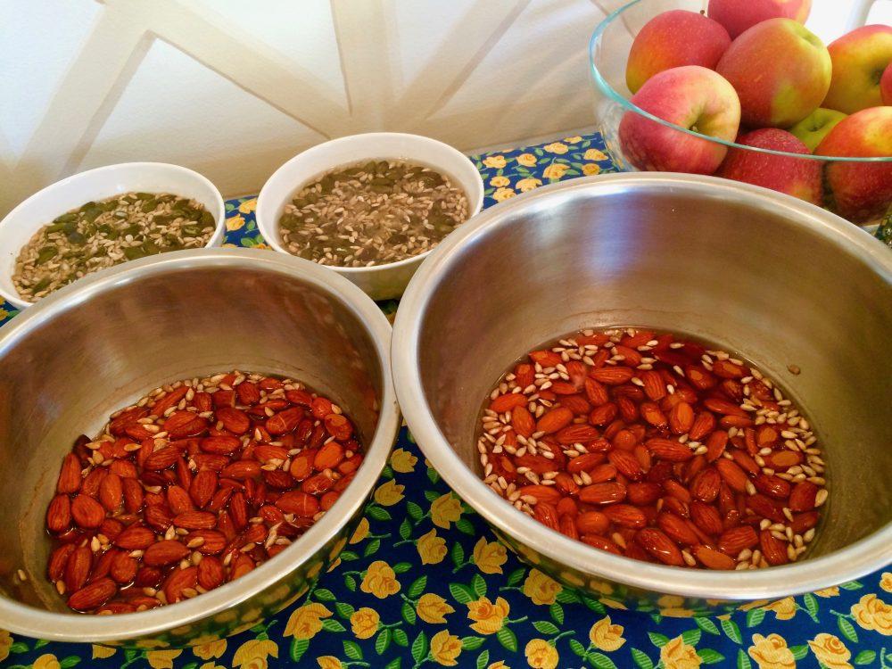 Namočené mandle v programu metabolic balance® jsou snadněji stravitelné a nutričně vstřebatelné