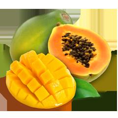 mango_papaya